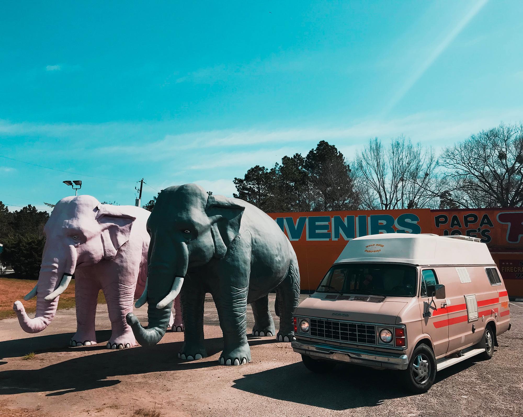 Generic Van Life - Georgia SC Elephants