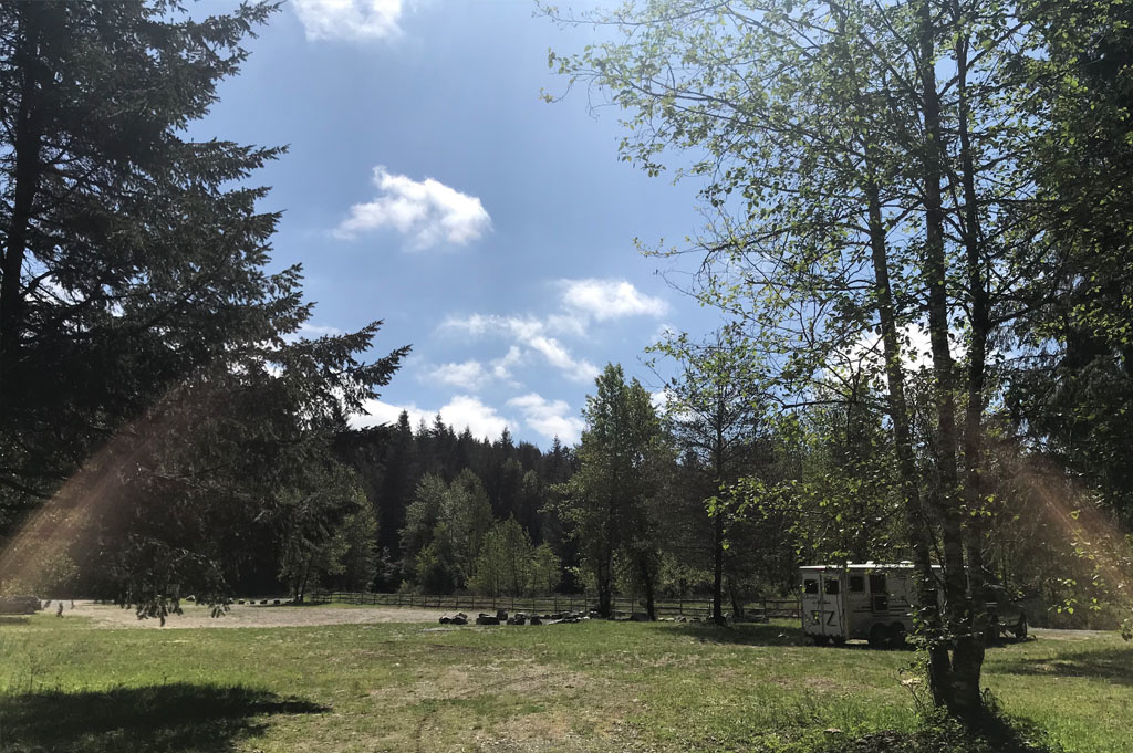 Generic-Van-Life-Camping-Spot-Spruston Staging Area- Vancouver Island – British Columbia – camp view