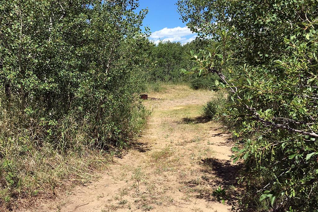Generic-Van-Life-Camping-Spot-Harris-Rest-Area-Saskatchewan-Path
