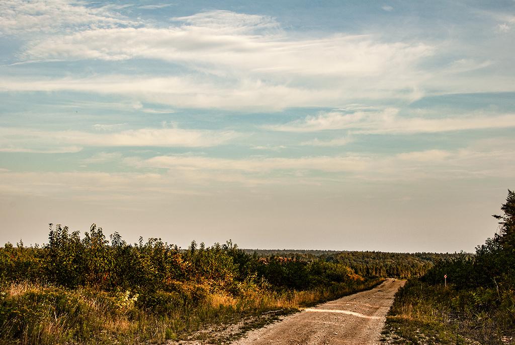 Generic-Van-Life-Fundy-Logging-Road-New-Brunswick-Trail