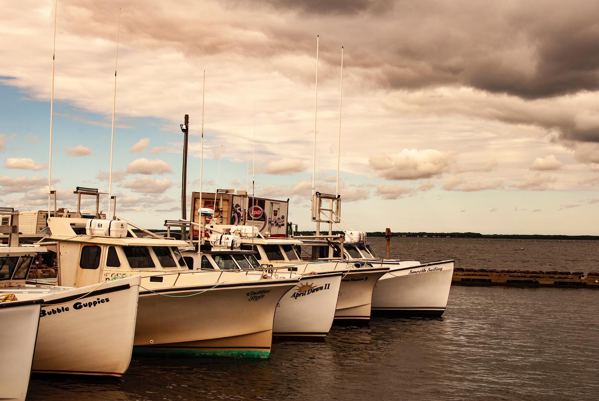 Generic Van Life - Lobster Land PEI Boats Wharf