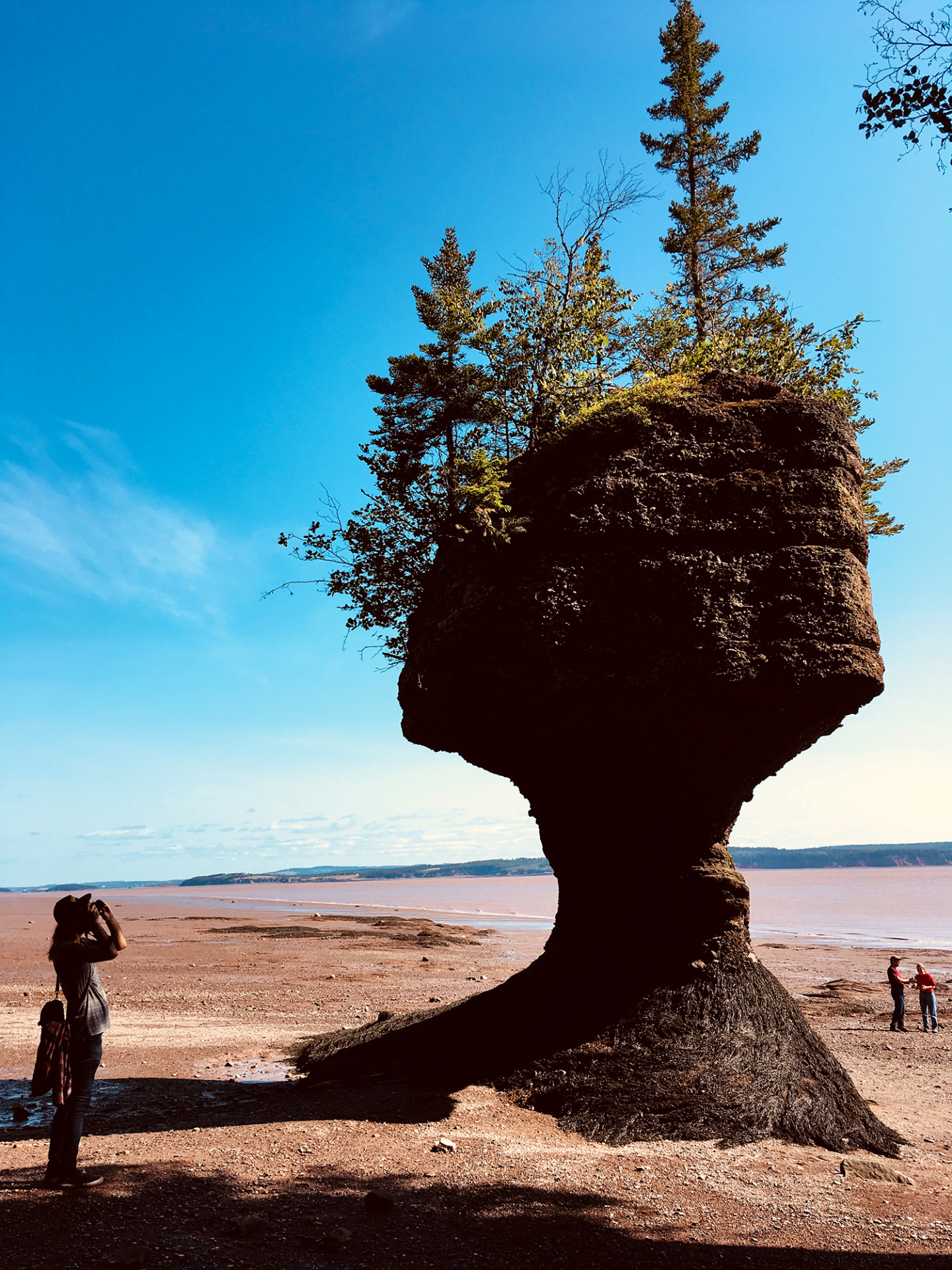 Generic Van Life - New Brunswick Tides Flowerpot Rock