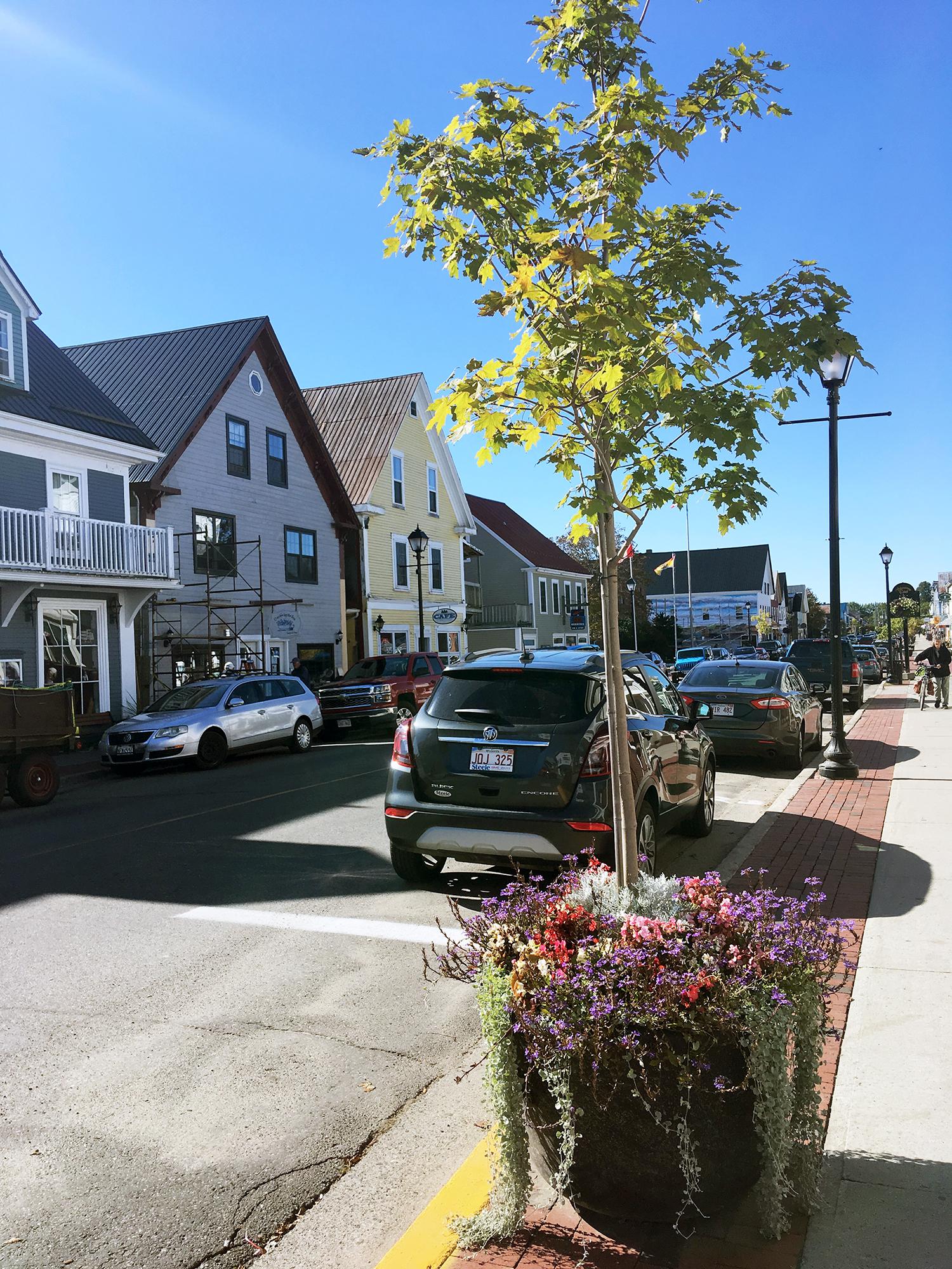 Generic Van Life New Brunswick Part II St Andrews Street