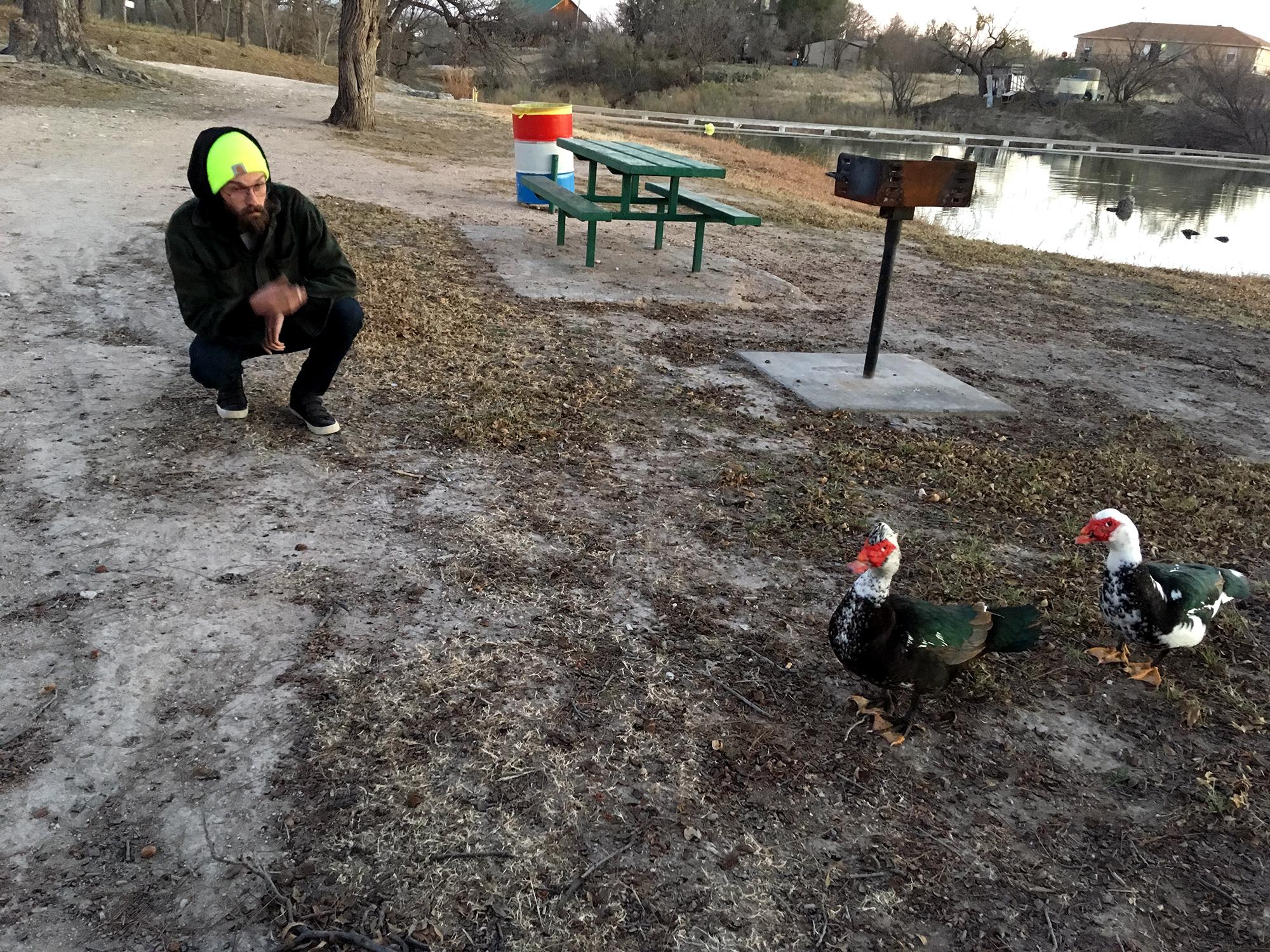 Generic Van Life - Austin Muscovy Ducks