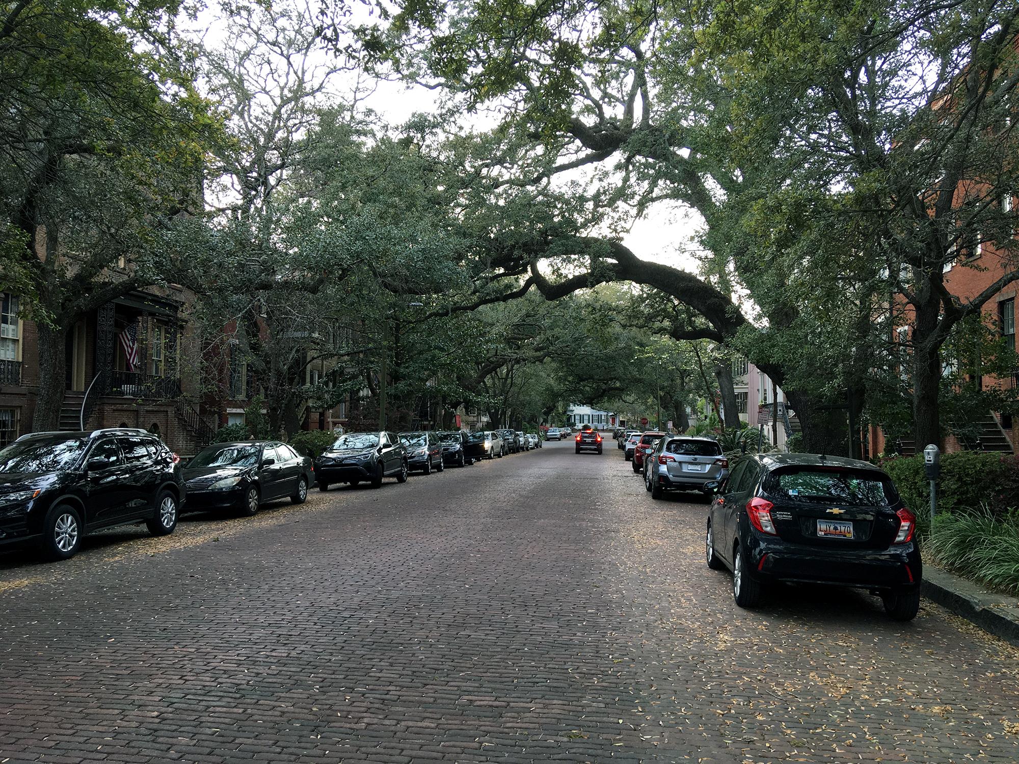 Generic Van Life - Georgia Savannah Street