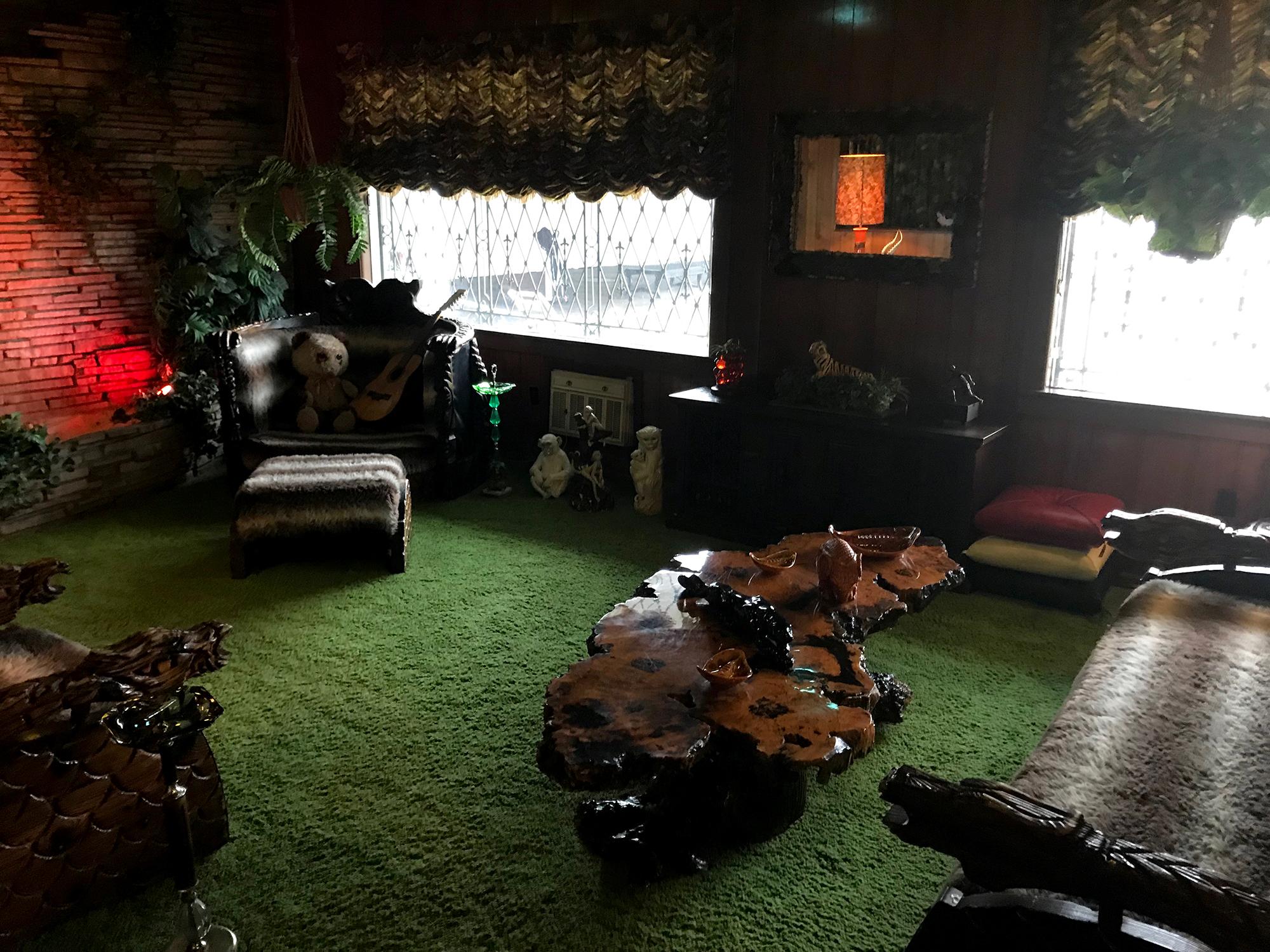 Generic Van Life - Tennessee Elvis Jungle Room