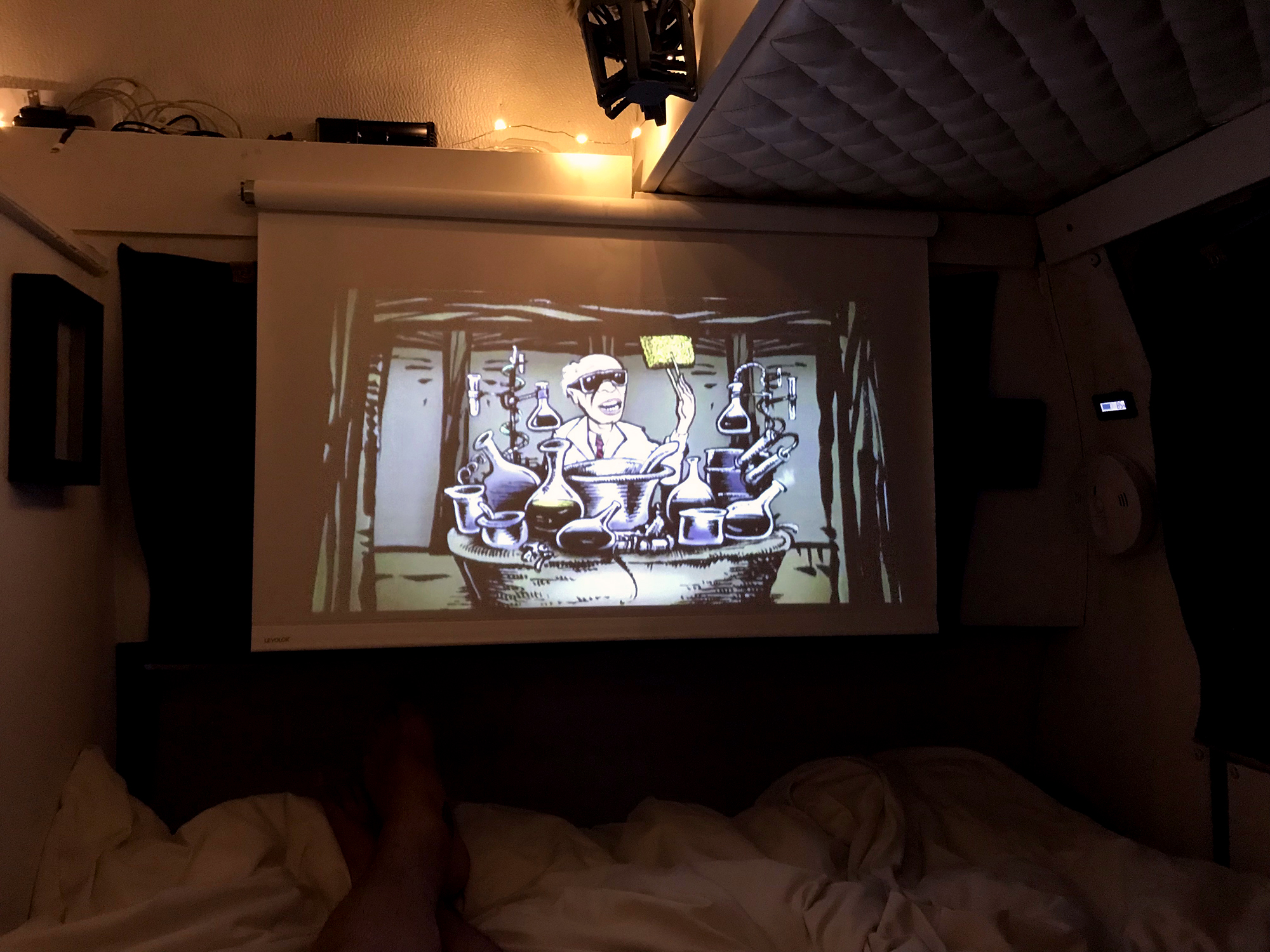 Generic Van Life - Albuquerque Projector