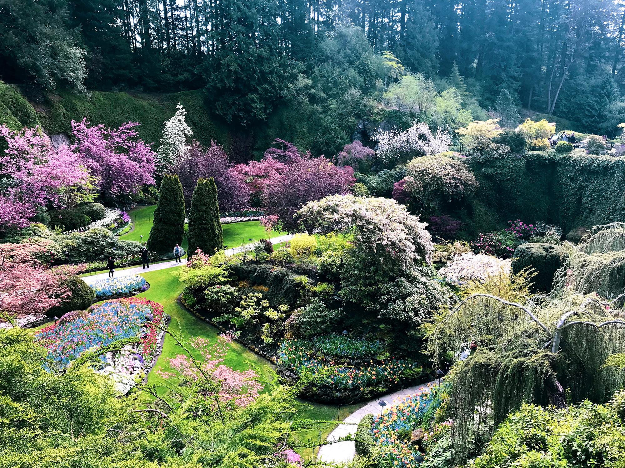Generic Van Life - Vancouver Island Butchart Gardens Sunken
