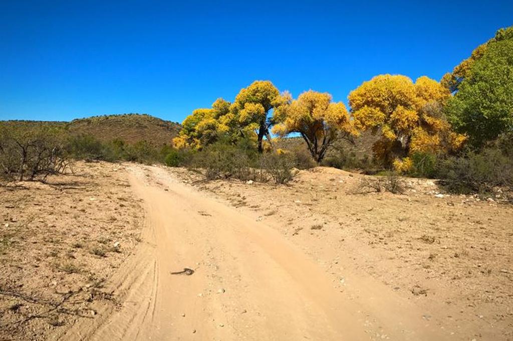 Camping Spot – Crozier Ranch Arizona United States