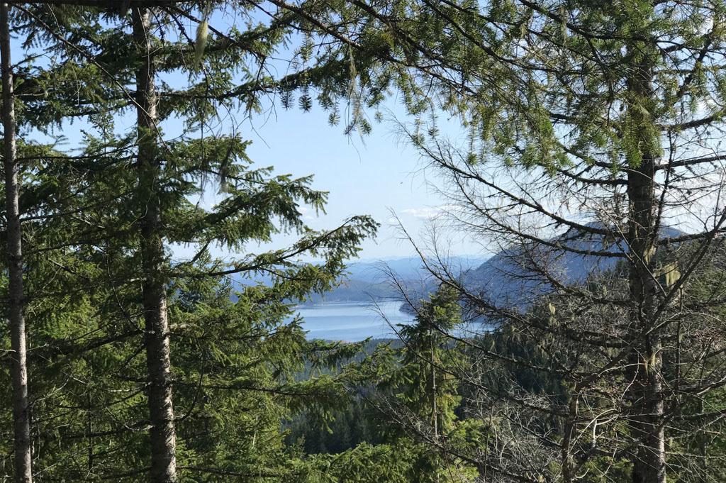 Generic-Van-Life-Camping-Spot-Lake Cushman Overlook – Washinton -United-States- Lake Cushman