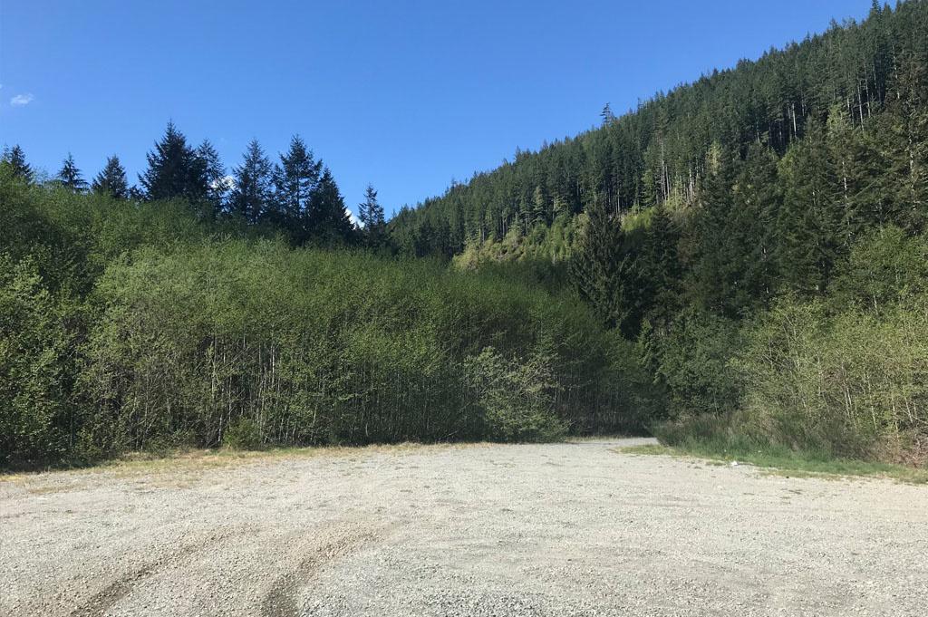 Generic-Van-Life-Camping-Spot- Pacific Marine Road – Vancouver Island – British Columbia – Forest Spot
