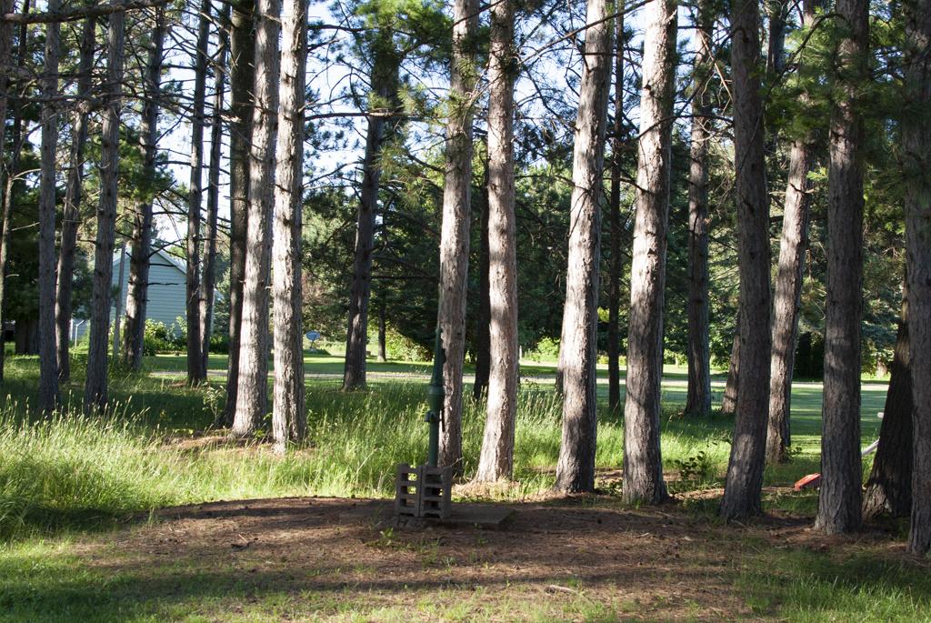 Generic-Van-Life-Camping-Spot-Bruno-Minnesota-Water-Pump-1024×685