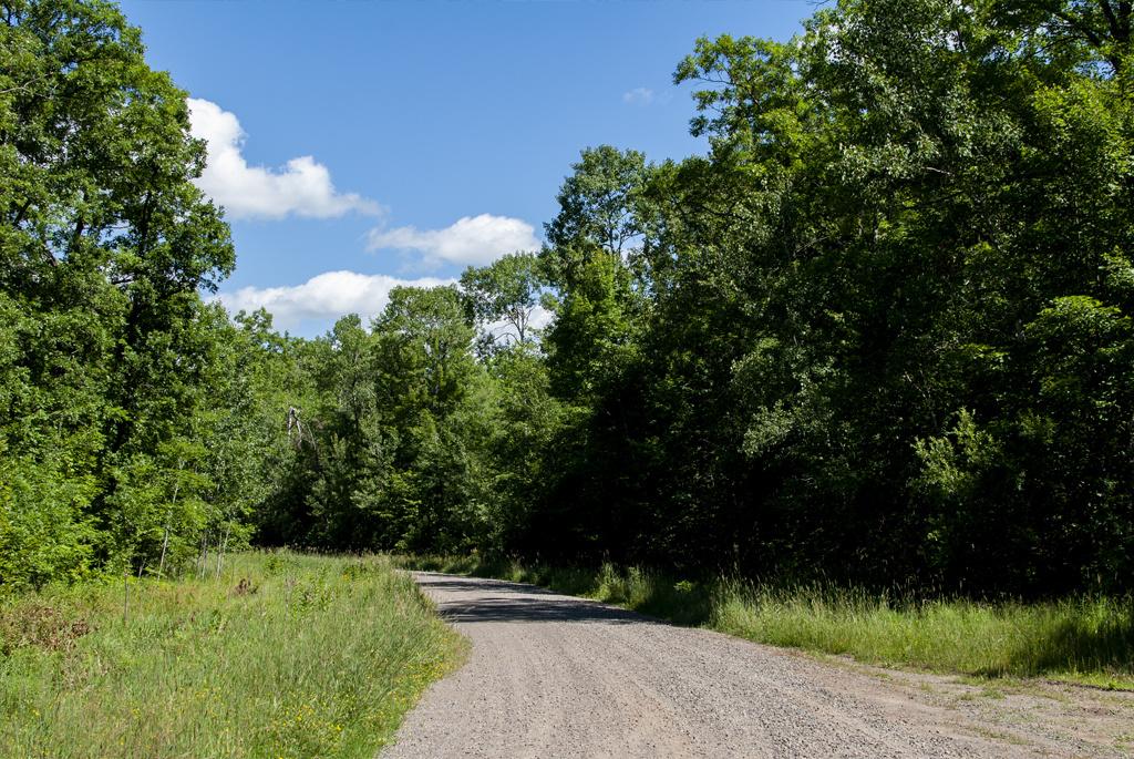 Generic-Van-Life-Camping-Spot-Rum-River-Minnesota-Road-In-1024x685