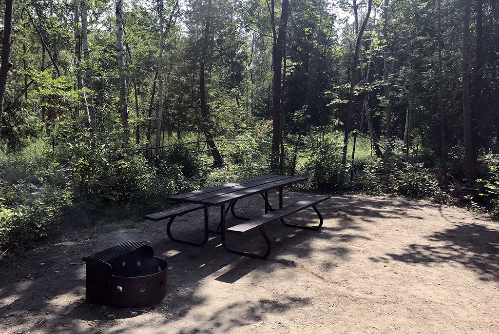 Generic-Van-Life-Camping-Spot-Magregor-Point-Provincial-Park-Ontario-Picnic-Table