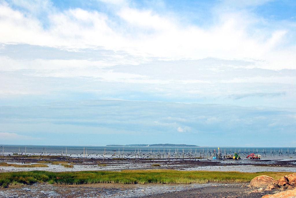 Generic-Van-Life-Camping-Spot-Kamouraska-Beach-Québec-Eel-Traps