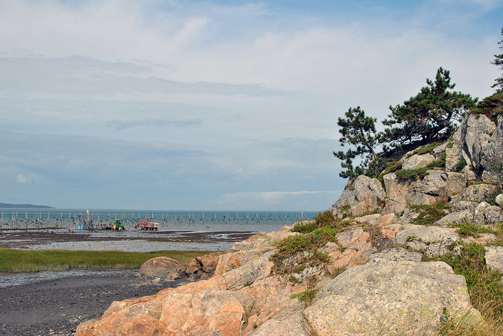 Generic-Van-Life-Camping-Spot-Kamouraska-Beach-Québec-River