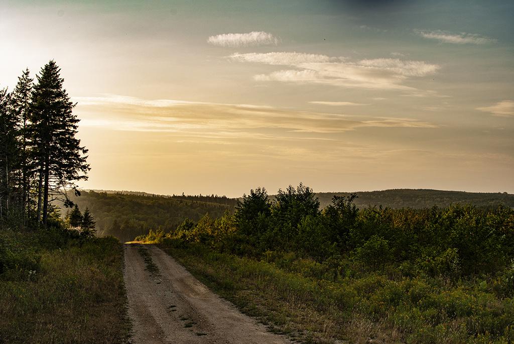 Generic-Van-Life-Fundy-Logging-Road-New-Brunswick-Dirt-Road
