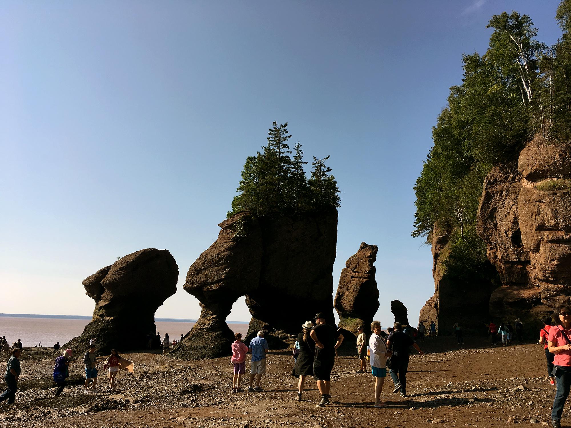 Generic Van Life - New Brunswick Tides Hopewell Rocks Seafloor