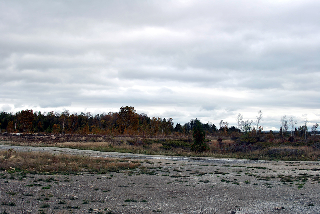 Generic-Van-Life-Camping-Spot-Goat-Island-Ontario-Lake-Huron