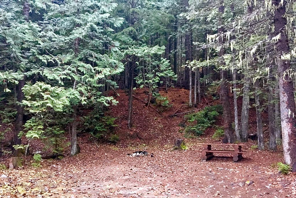 Generic-Van-Life-Erie-Creek-British-Columbia-Spot