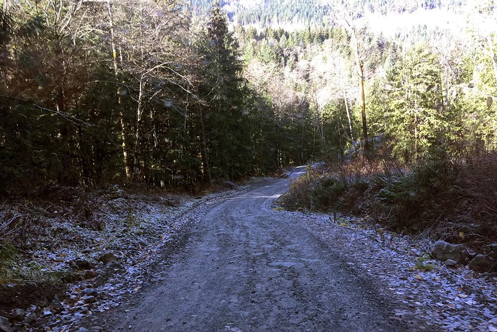 Generic-Van-Life-Jones-Lake-British-Columbia-Road