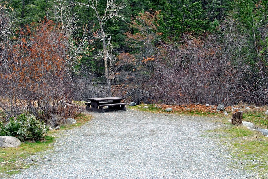 Generic-Van-Life-Tunnel-Mountain-British-Columbia-Picnic-Table