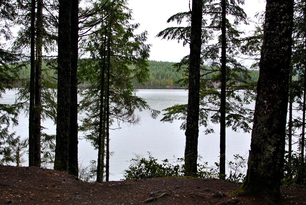 Generic-Van-Life-Camping-Spot-Long-Point-British-Columbia-Lake