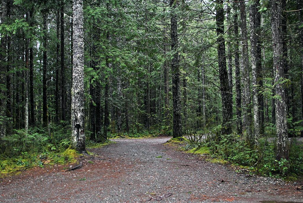 Generic-Van-Life-Camping-Spot-Long-Point-British-Columbia-Road