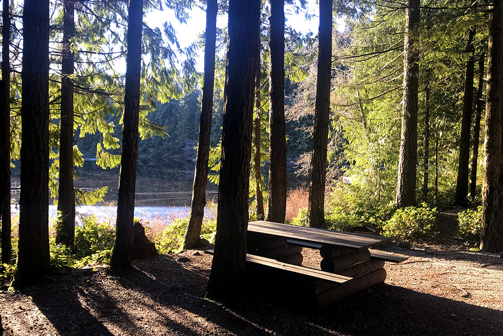 Generic-Van-Life-Camping-Spot-Twin-Lake-British-Columbia-Picnic-Table