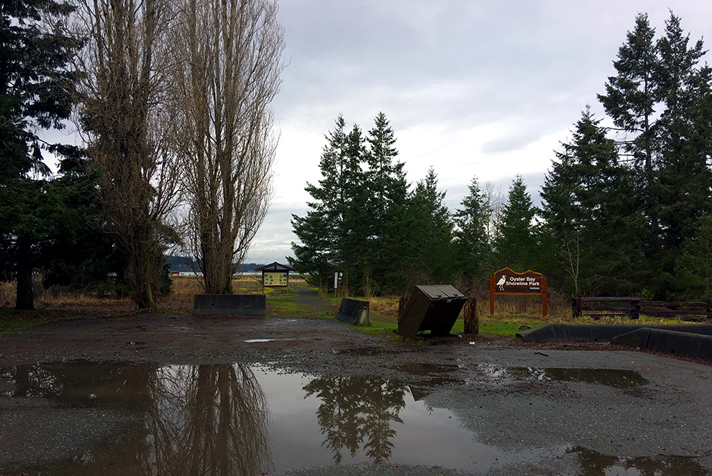 Generic-Van-Life-Camping-Spot-Oyster-Bay-Rest-Area-British-Columbia-Park