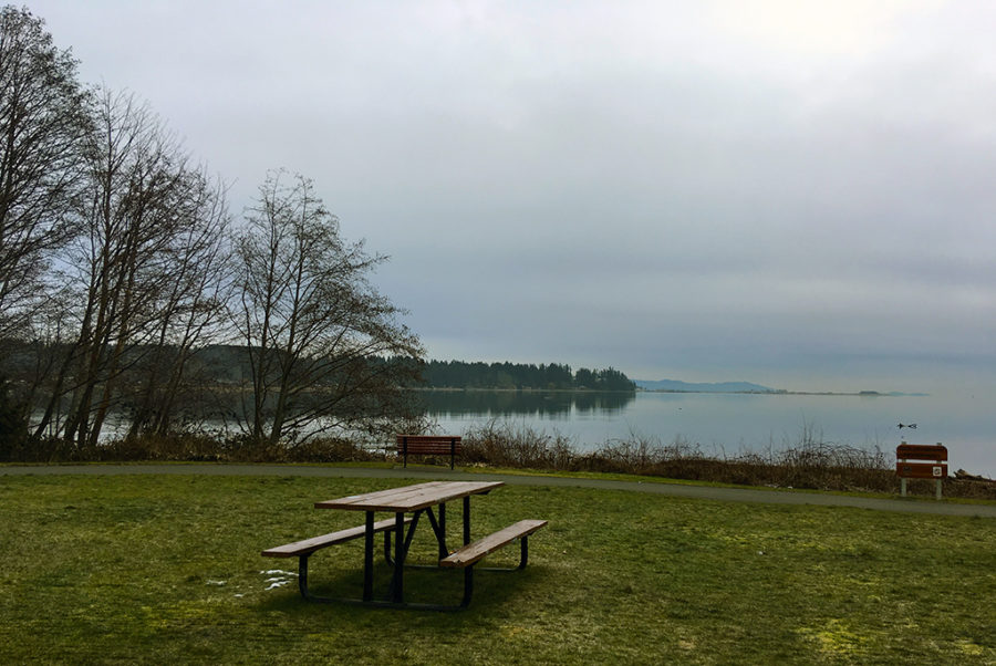 Generic-Van-Life-Camping-Spot-Courtenay-Riverway-Park-British-Columbia-Picnic-Table