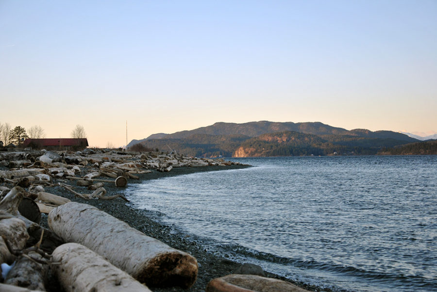 Generic-Van-Life-Camping-Spot-Dick-Murphy-Park-British-Columbia-Beach