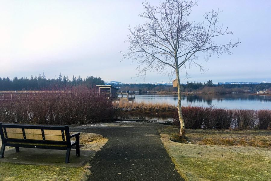 Generic-Van-Life-Camping-Spot-Dick-Murphy-Park-British-Columbia-Bench