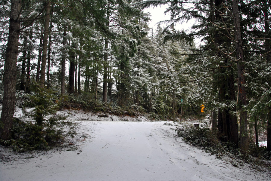 Generic-Van-Life-Camping-Spot-Echo-Lake-British-Columbia-Turn-In