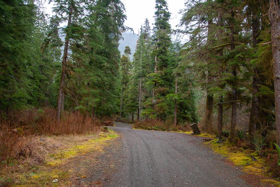 Generic-Van-Life-Camping-Spot-Leiner-River-British-Columbia-Road