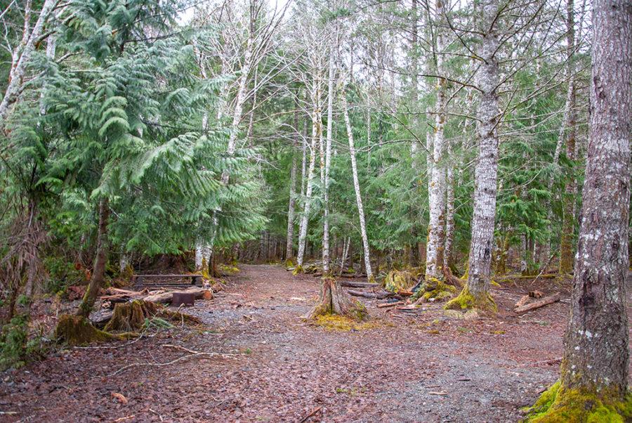 Generic-Van-Life-Camping-Spot-Muchalat-Lake-British-Columbia-Campsite