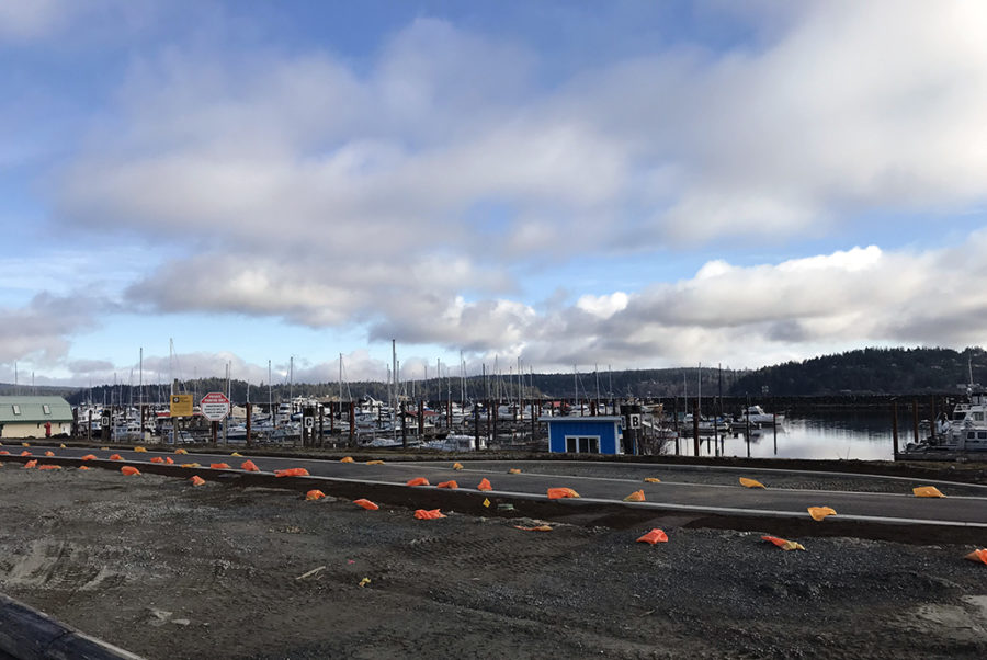 Generic-Van-Life-Camping-Spot-Roberts-Reach-British-Columbia-Marina