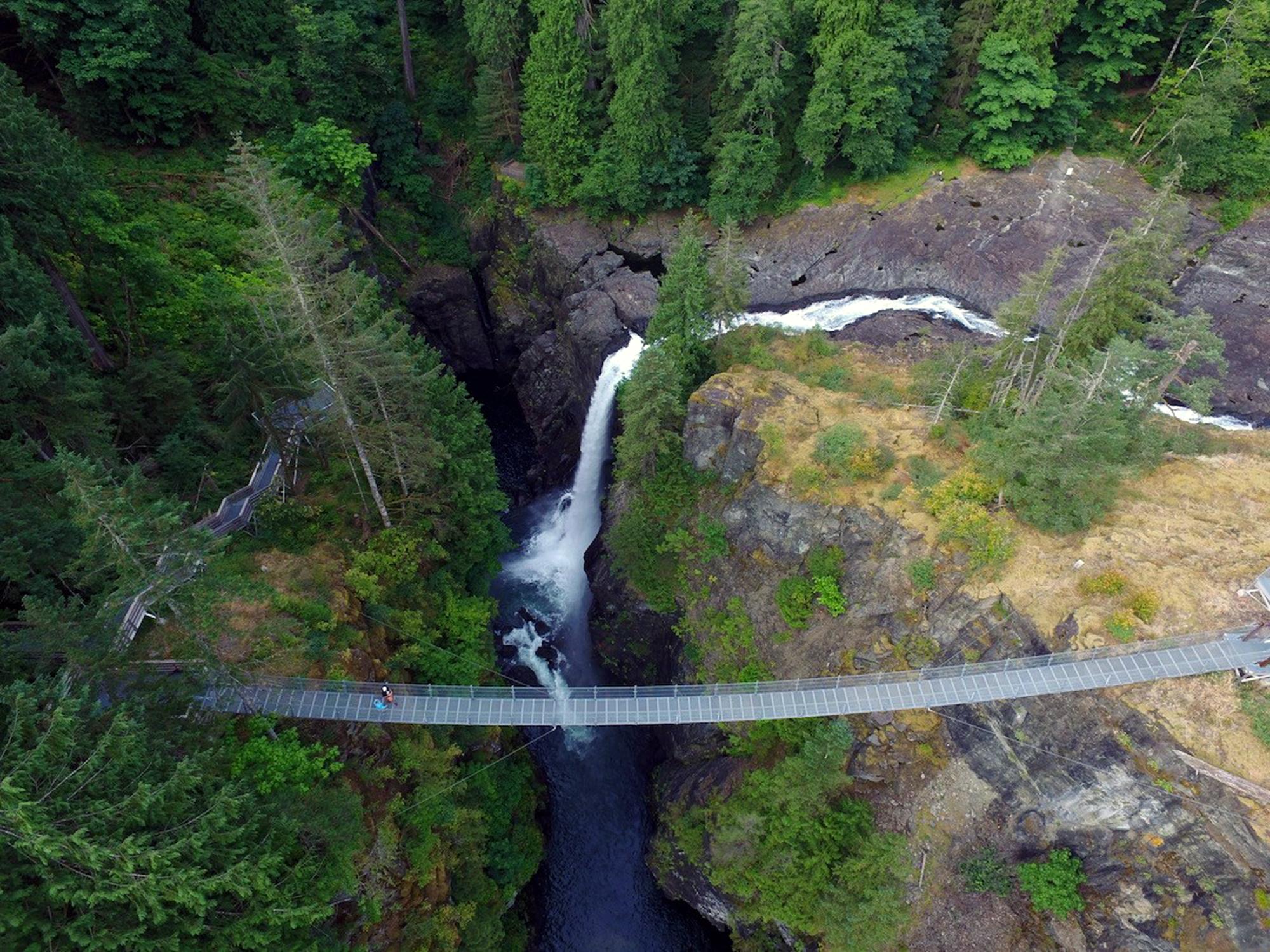 Generic Van Life - The Ultimate Vancouver Island Road Trip - Elk Falls Suspension Bridge