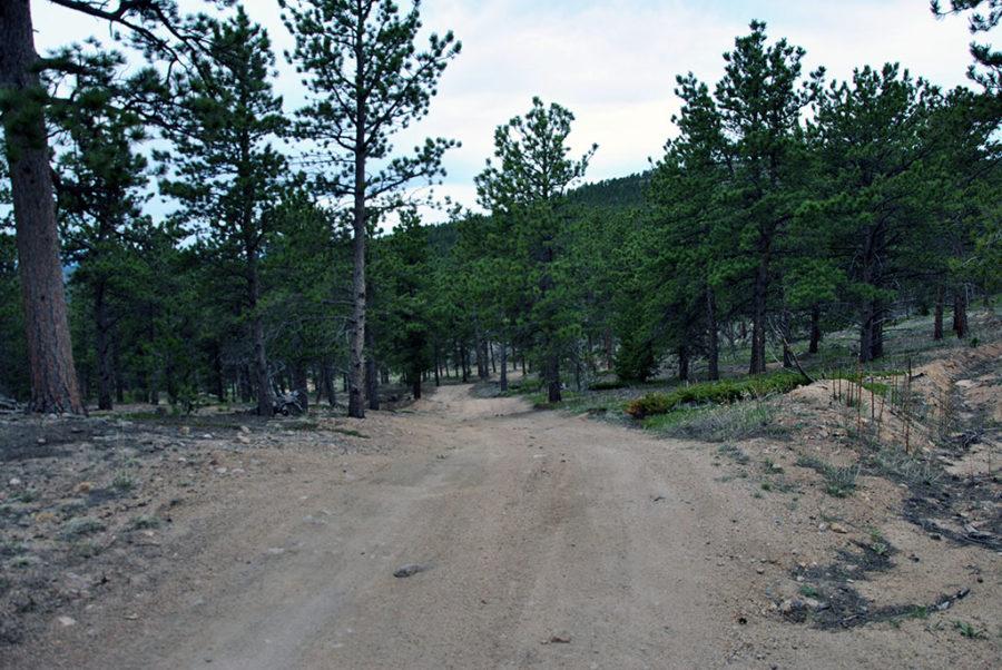 Generic-Van-Life-Camping-Spot-Gold-Lake-Colorado-Road