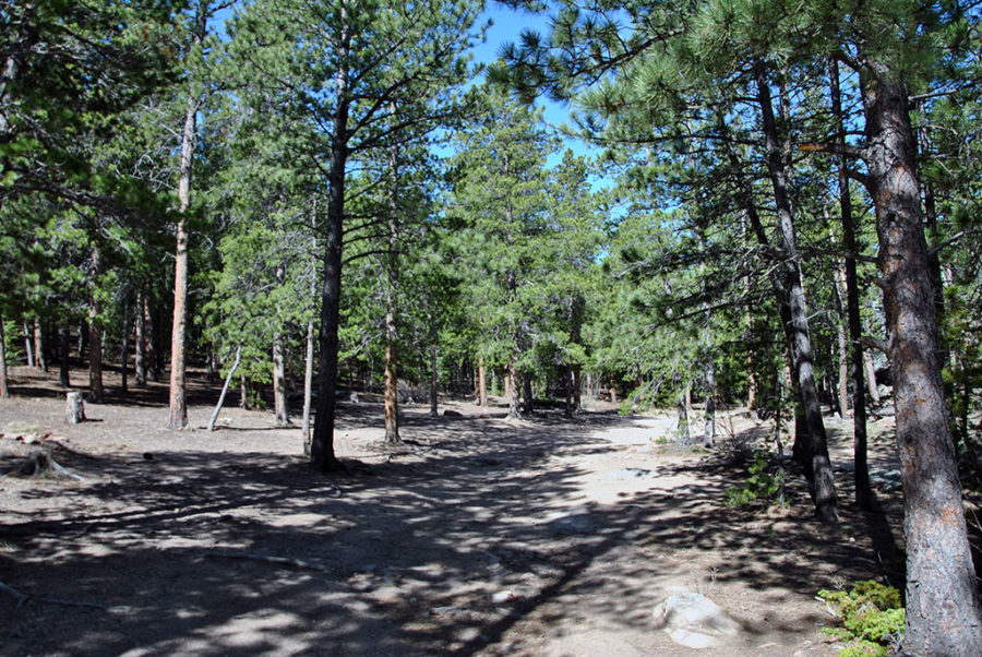Generic-Van-Life-Camping-Spot-Johnny-Park-Road-Colorado-Road