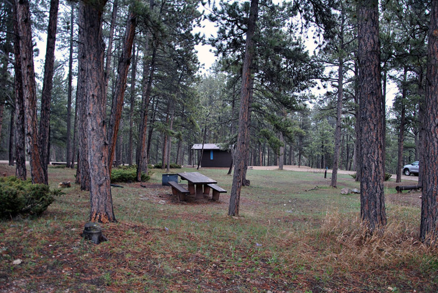 Generic-Van-Life-Camping-Spot-Reuter-Campground-Wyoming-Picnic-Table