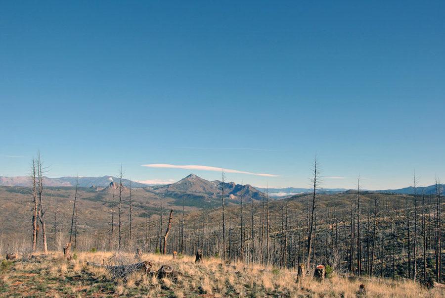 Generic-Van-Life-Camping-Spot-Rule-Creek-Trail-Colorado-View