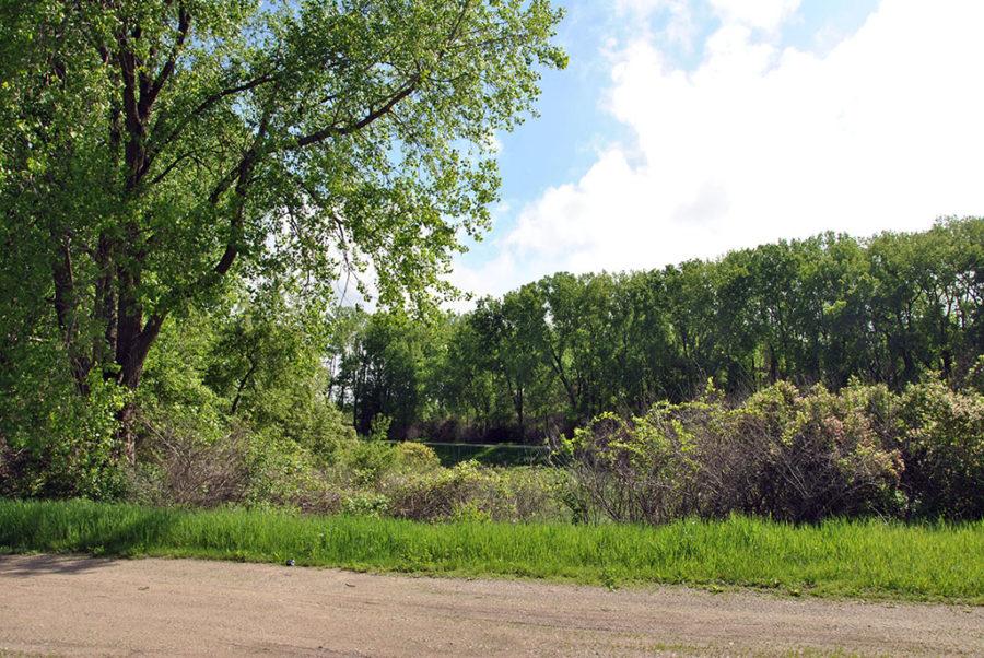 Generic-Van-Life-Camping-Spot-Elk-Creek-Marsh-Iowa-Road