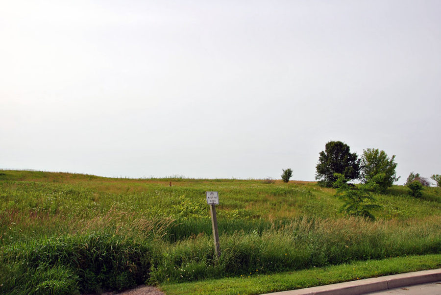 Generic-Van-Life-Camping-Spot-Beloit-Rest-Area-Wisconsin-Dog-Run