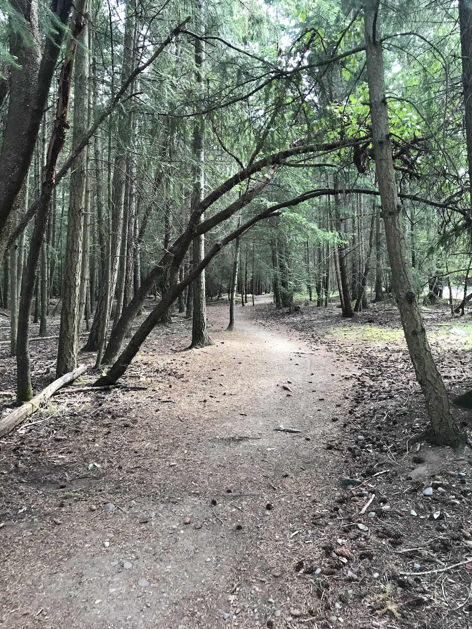 Generic Van Life - End of Van Life - Mary Bonnet Park